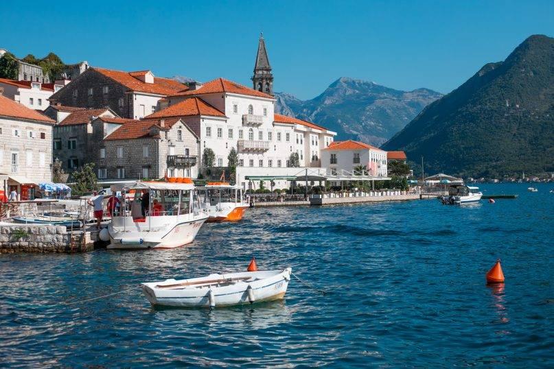 montenegro-dinhcuquocte.com.vn